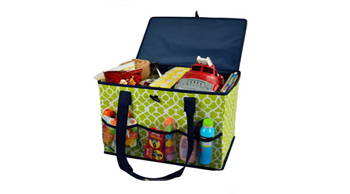 Collapsible Home & Trunk Organizer
